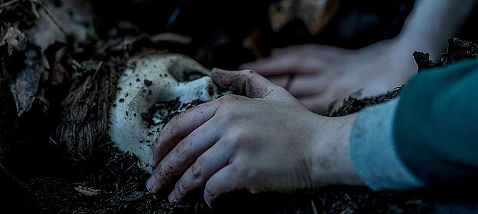Brahms: The Boy II – Horror, Trailer, Kinostart, Horrorfilm, Suspense, Puppenhorror, Jumpscares, Infos